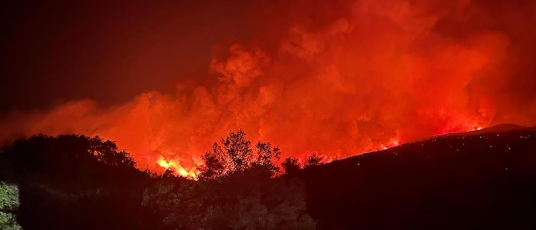 Φωτιά στα Βίλια