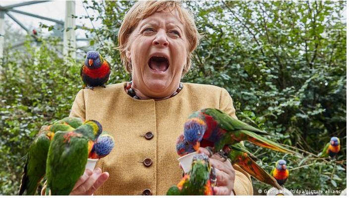 Άνγκελα Μέρκελ- παπαγάλοι